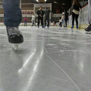 Журка на леду
